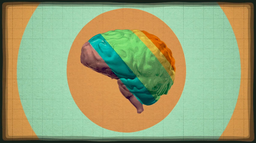 VIDEO: Your Brain on Food